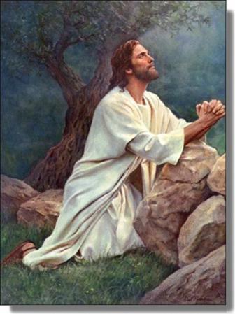 image-e05afba72a188687e3e8b1d11079f650-prayeratgethsemane (2)