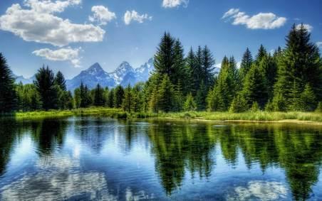 imagenes-de-paisajes-verdes-4