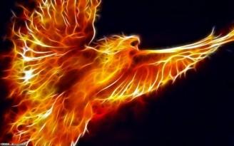 Pájaro-de-fuego-600x375