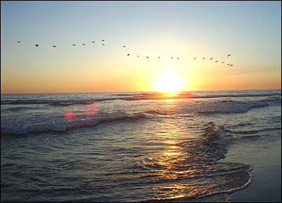 playa-sol