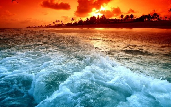 sunset-ocean-waves-palm-trees-sea-beaches-background-150281